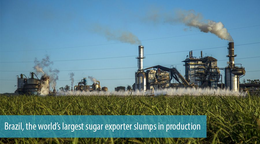 Brazil's sugar cane industry's poorest year in a decade gets worse