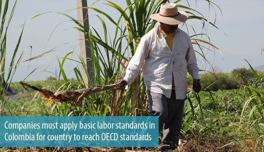 Companies must apply basic labor standards in Colombia for country to reach OECD standards
